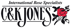 C & K Jones International Rose Specialist